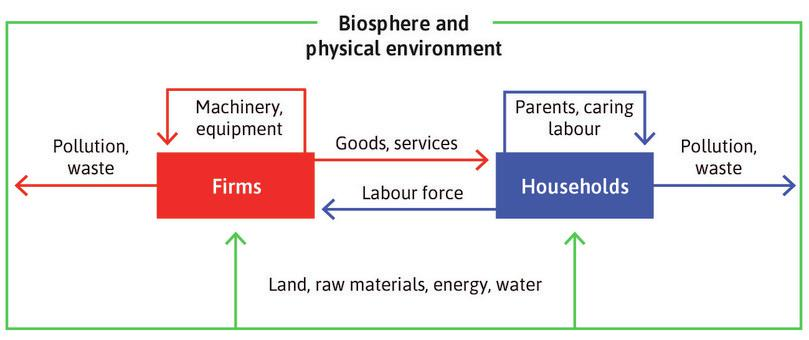 The economy of households and firms depends on a healthy biosphere and stable physical environment.