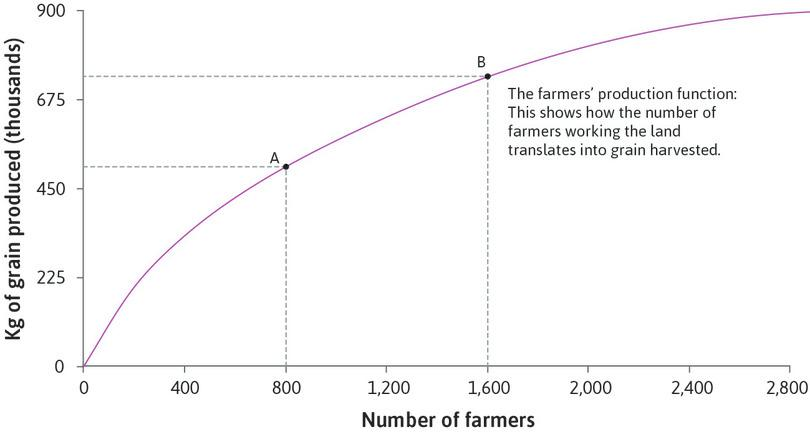 Output when there are 1,600 farmers: Point B on the production function shows the amount of grain produced by 1,600 farmers.