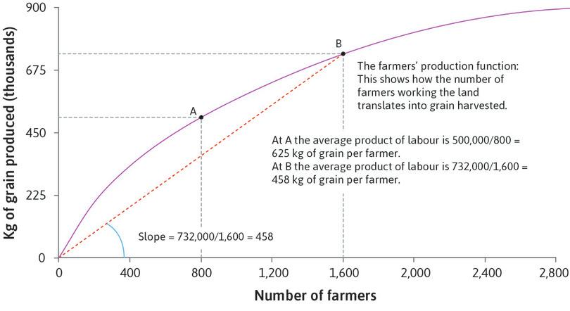 The slope of the ray is the average product: The slope of the ray from the origin to point B on the production function shows the average product of labour at point B. The slope is 458, meaning an average product of 458 kg per farmer when 1,600 farmers work the land.