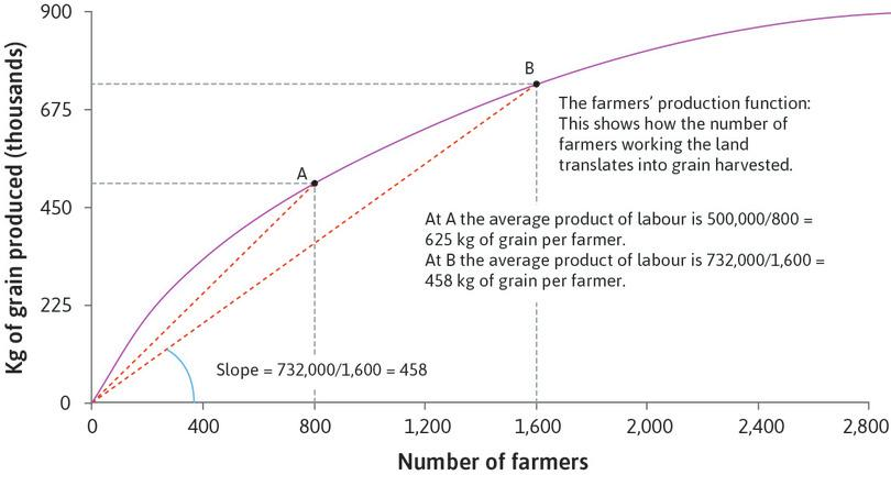 The farmers' production function: Diminishing average product of labour.
