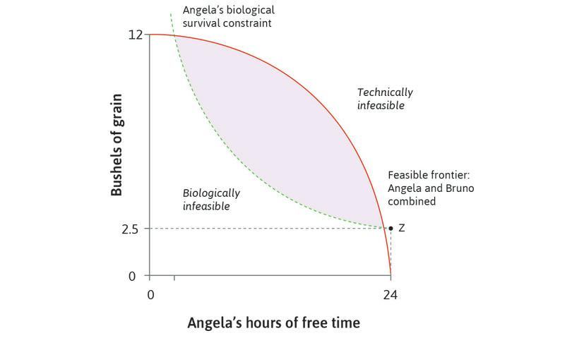 Biologically infeasible and technically infeasible points: Points below the biological survival constraint are biologically infeasible, while points above the feasible frontier are technically infeasible.