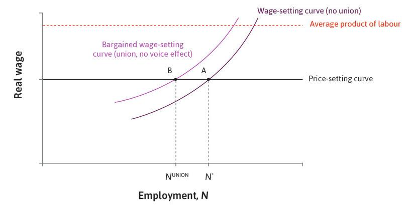 The bargained wage-setting curve when there is no union voice effect.