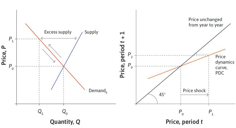 The price adjusts: The PDC shows that if the price this period is *P*<sub>1</sub>, then it will be *P*<sub>2</sub> next period.