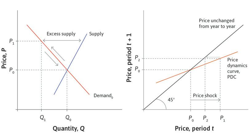 Beliefs dampen prices: Since the PDC is flatter than the 45° line, *P*<sub>2</sub> is closer to the equilibrium than *P*<sub>1</sub>. Investors are influenced by their beliefs about the fundamental value of FCC, which is *P*<sub>0</sub>.