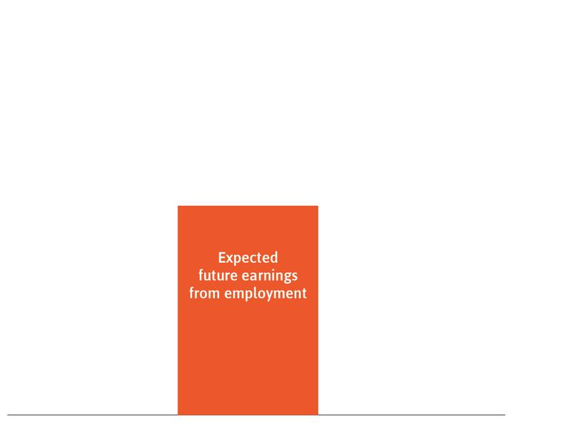 Expected future earnings from employment: These are represented by the orange rectangle.