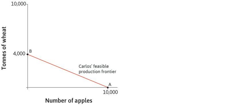 The feasible production frontier: The red line that joins points A and B is the feasible production frontier for Carlos. It shows all the combinations of wheat and apples that can be produced by Carlos in a year.
