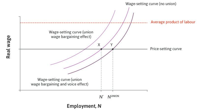 The bargained wage-setting curve and equilibrium when there is a union voice effect.