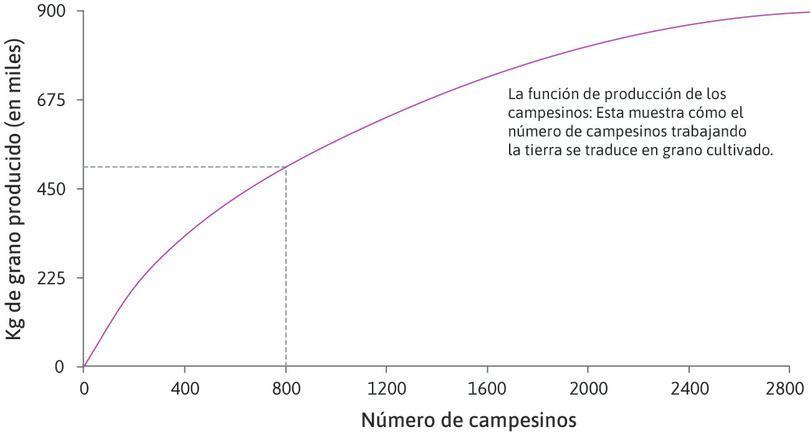 La función de producción de un agricultor : La función de producción muestra cómo el número de agricultores que trabajan la tierra se traduce en grano producido al final de la estación de cultivo.