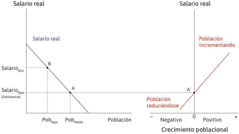 Conexión entre los dos diagramas : En el punto A, a la izquierda, la población es de tamaño medio y el salario está en su nivel de subsistencia. Ahora vayamos al diagrama del otro lado, al punto A′, a la derecha, que muestra el punto en que el crecimiento de la población es igual a cero. Así, si la economía está en el punto A, se encuentra en equilibrio: la población permanece constante y los salarios permanecen en su nivel de subsistencia.