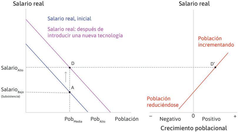 La población comienza a incrementarse : En el punto D, el salario se ha elevado sobre el nivel de subsistencia y, por lo tanto, la población comienza a crecer (punto D′).