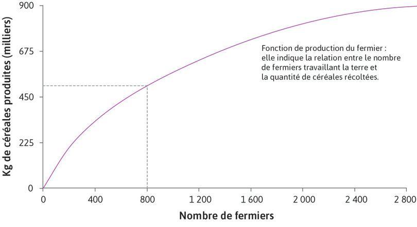 La fonction de production du fermier : La fonction de production montre la relation entre le nombre de fermiers travaillant la terre et la quantité de céréales récoltée à la fin de la saison.