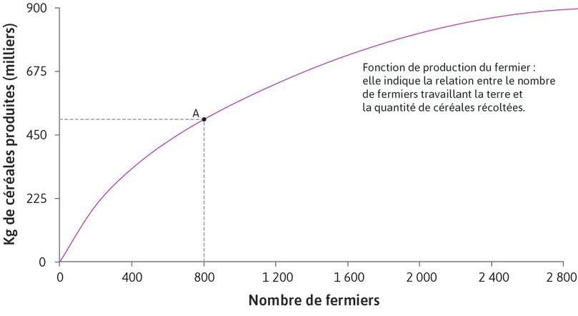 Production avec 800 fermiers : Le point A de la fonction de production représente la quantité de céréales produite par 800fermiers.
