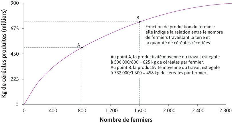 La production moyenne diminue : Au point A, la productivité moyenne du travail est 500000 ÷ 800 = 625kg de céréales par fermier. Au point B, la productivité moyenne du travail est 732000 ÷ 1600 = 458kg de céréales par fermier.