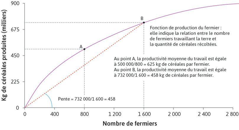 La pente de la corde représente la productivité moyenne : La pente de la corde partant de l'origine et passant par le point B situé sur la fonction de production représente la productivité moyenne du travail au point B. La pente est de 458, ce qui signifie que la productivité moyenne est de 458kg par fermier lorsque 1600fermiers travaillent la terre.