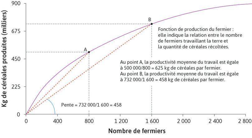 Fonction de production d'un fermier: décroissance de la productivité moyenne du travail.