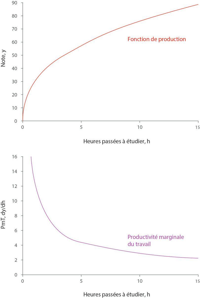 La fonction de production y = 30h0.4 et la productivité marginale correspondante.