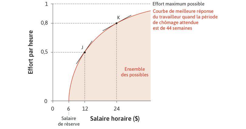 L'ensemble des possibles de l'employeur : La courbe de meilleure réponse est la frontière de l'ensemble des possibles de l'employeur en termes de combinaisons de salaire et d'effort fourni par ses employés.