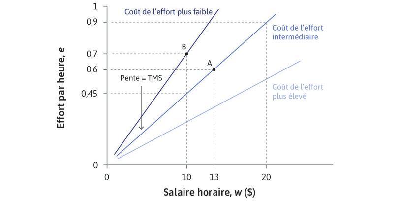 Courbes d'indifférence de l'employeur: courbes d'isocoût pour l'effort.