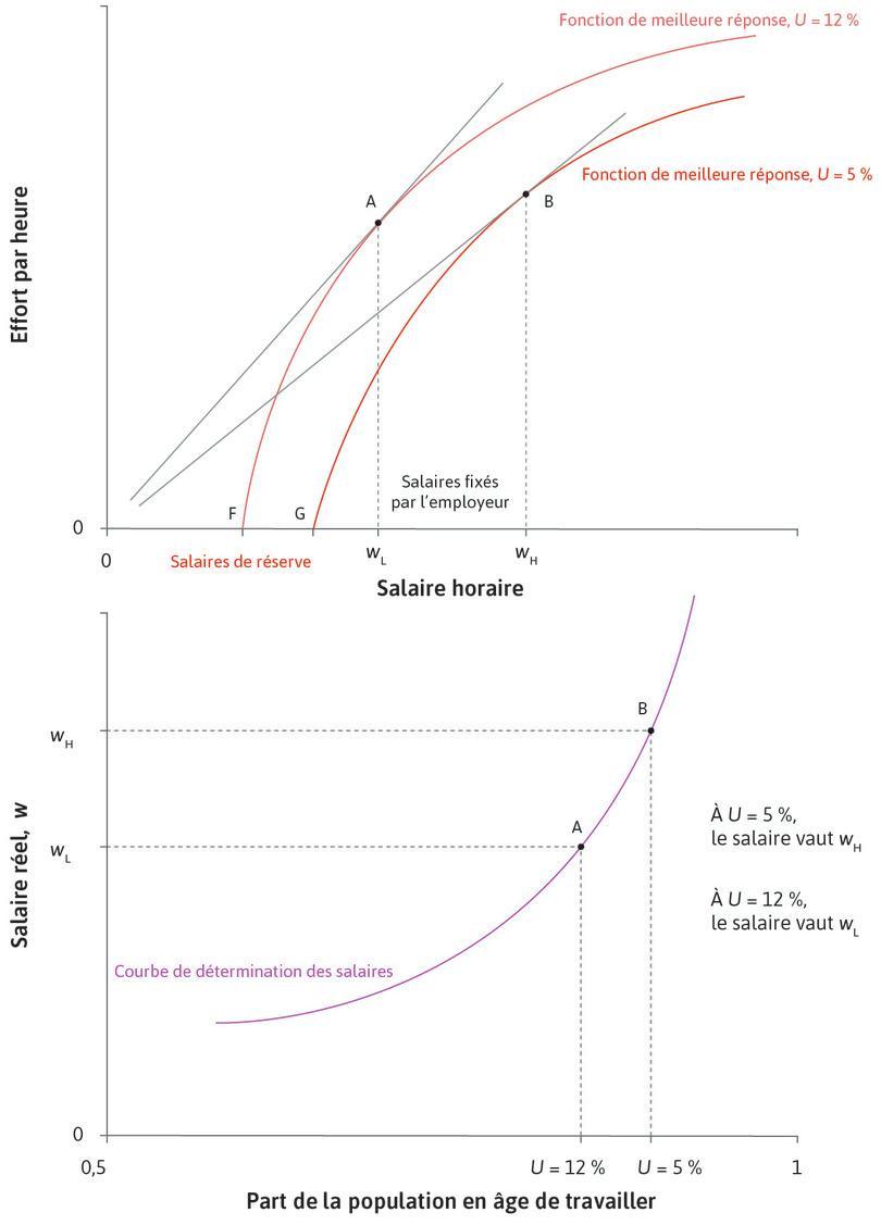 Obtention de la courbe des salaires: variation du taux de chômage de l'économie.