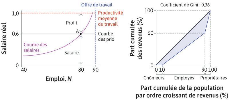La répartition des revenus à l'équilibre du marché du travail.