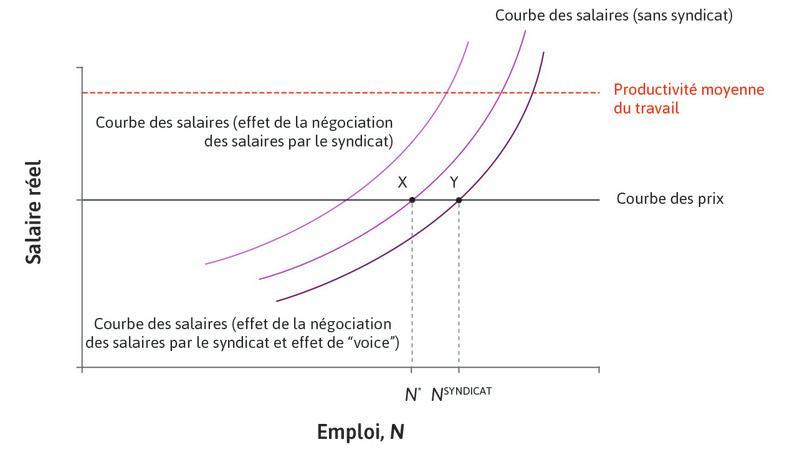 La courbe des salaires négociés et l'équilibre du marché du travail lorsqu'il y a un effet de «voix» du syndicat.