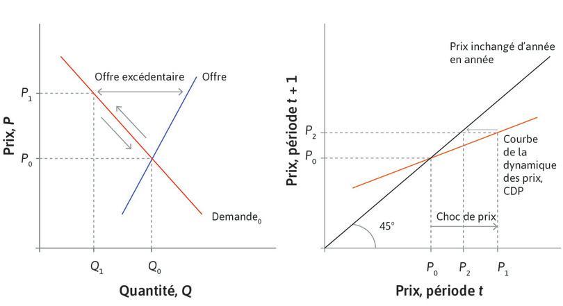 Les croyances atténuent les variations de prix : Puisque l'EDP est plus plate que la droite à 45degrés, P2 est plus proche de l'équilibre que P1. Les investisseurs sont influencés par leurs croyances sur la valeur fondamentale de la FCC, qui vaut P0.