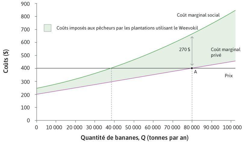 Choix du niveau de production de bananes par les bananeraies