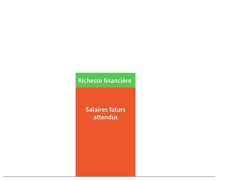 Richesse financière : C'est le rectangle vert.