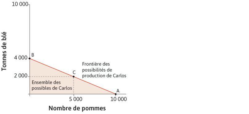 L'ensemble des possibles de Carlos : Il peut produire n'importe quelle combinaison entre l'origine et la frontière des possibilités de production. La zone rouge représente son ensemble des possibles.