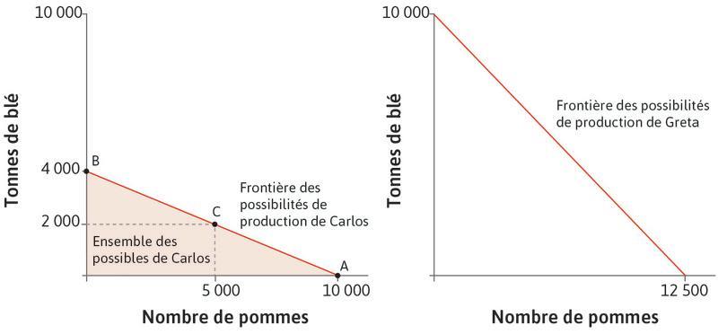 La frontière des possibilités de production de Greta : On peut la voir dans le graphique de droite. Greta peut produire plus de chaque bien que Carlos. Si elle ne produit qu'un bien, elle peut produire soit 12500pommes, soit 10000tonnes de blé avec 100hectares de terre.