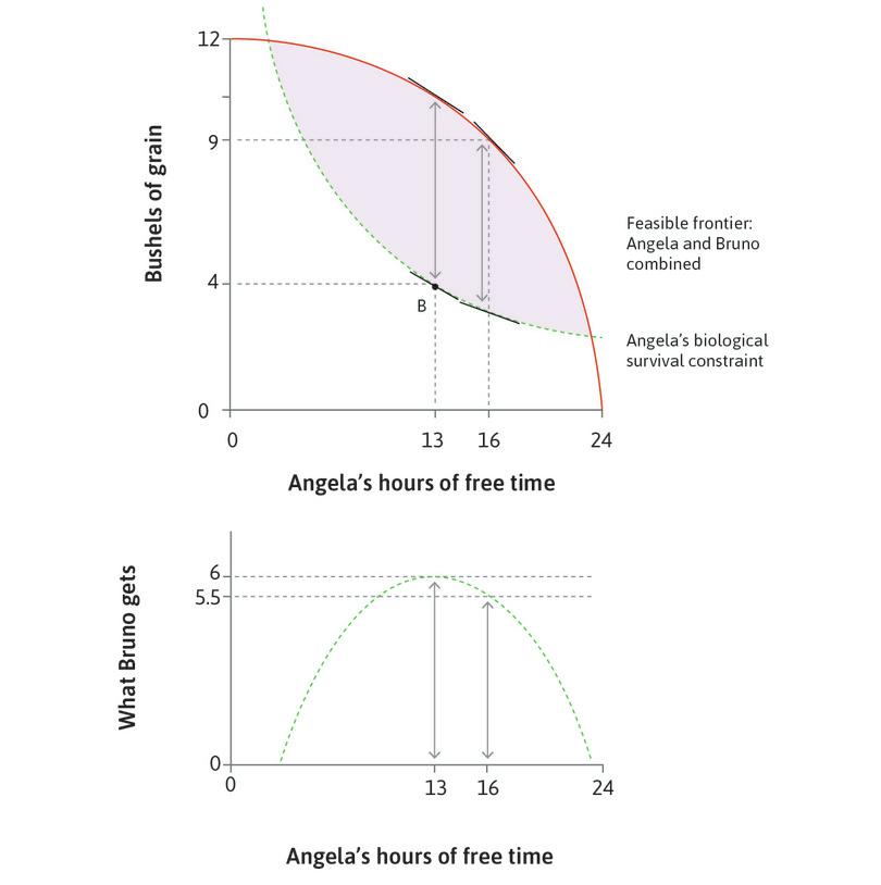The maximum distance between frontiers : The vertical distance between the feasible frontier and the biological survival constraint is greatest when Angela works for 11 hours (13 hours of free time).