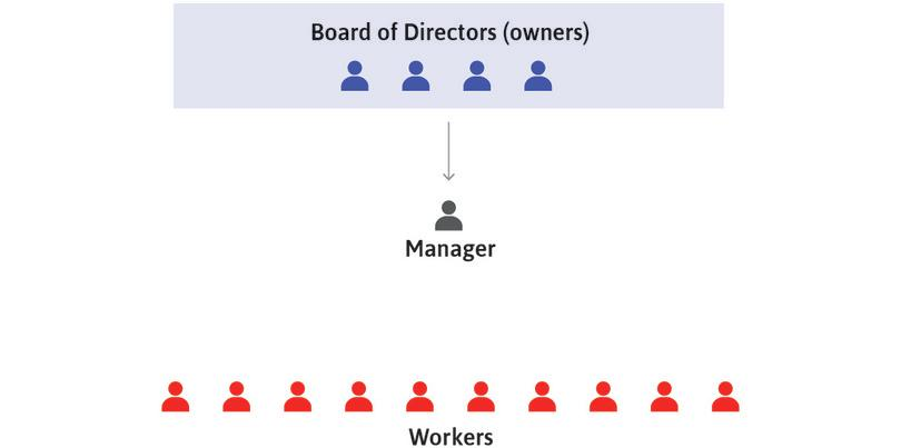 Owners decide long-term strategies : The owners, through their board of directors, decide the long-term strategies of the firm concerning how, what, and where to produce. They then direct the manager(s) to implement these decisions.