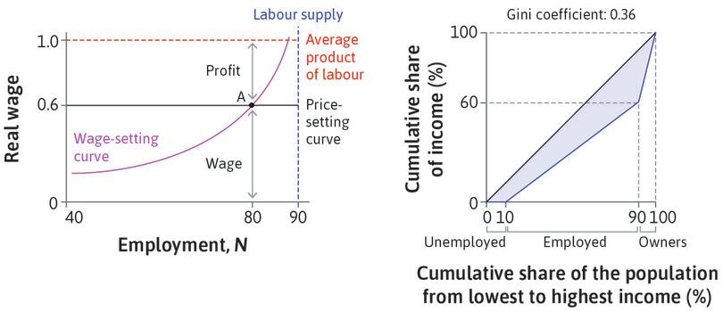 The distribution of income at labour market equilibrium.