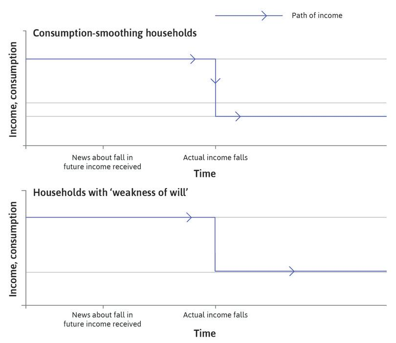 The path of income : The blue lines in the figure show that income follows the same path in both sets of households.