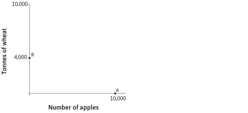 Specialization in wheat: Similarly, if Carlos produces only wheat then he can produce 4,000 tonnes, as shown by point B on the vertical axis.