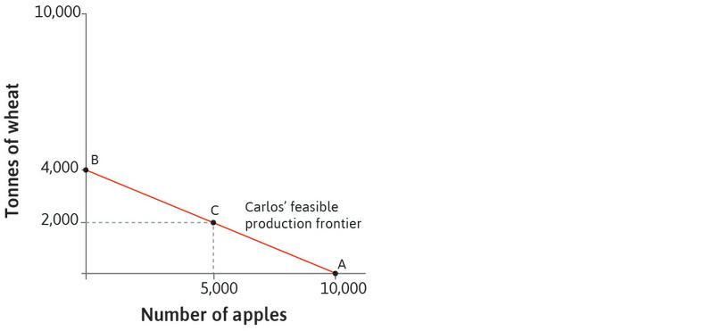 Carlos's choice: He can choose to produce any combination on (or inside) the frontier. For example, he could produce 2,000 tonnes of wheat and 5,000 apples, as shown by point C.