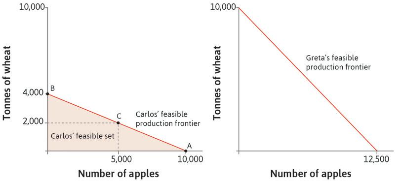 The feasible production frontier for Greta: This is shown in the right hand panel. Greta can produce more of both goods than Carlos can. If she only produces a single good, she can produce either 12,500 apples or 10,000 tonnes of wheat with 100 hectares of land.