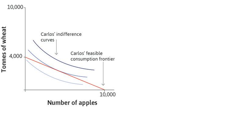 Carlos' indifference curves: The shape of the indifference curves represents Carlos' preferences over wheat and apples.