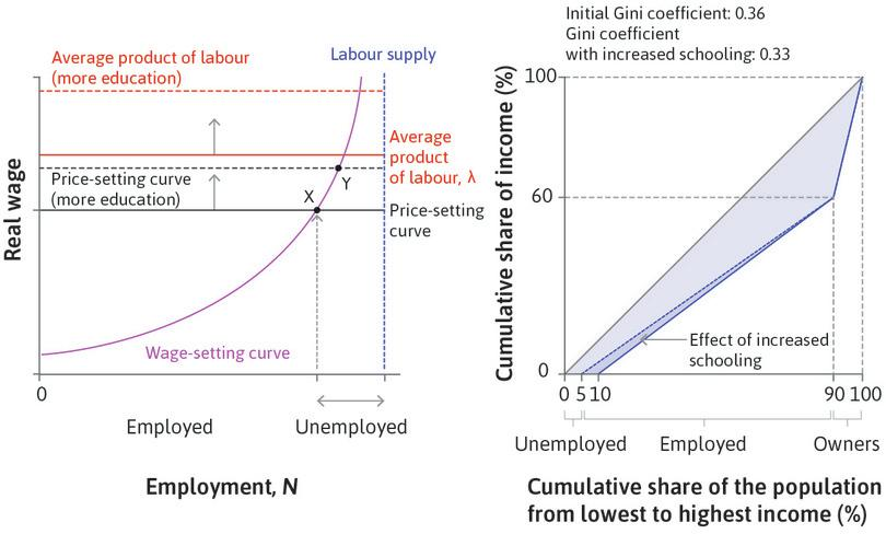 The effect of a more educated workforce on inequality among employers, employees, and the unemployed: The economy-wide labour market and the Lorenz curve.