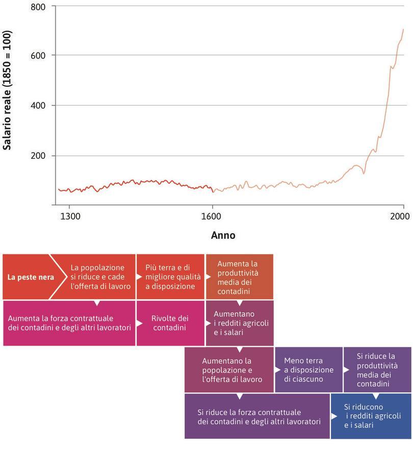 L'Inghilterra dei secoli XIV-XVI: un'economia malthusiana : Il caso dell'Inghilterra tra il 1300 e il 1600 illustra bene il funzionamento di un'economia malthusiana.