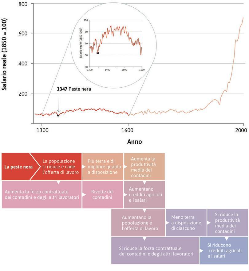 La peste nera : La peste bubbonica del 1348–50, conosciuta come peste nera, uccise 1,5 milioni di persone su una popolazione inglese stimata di quattro milioni, portando ad una caduta drammatica dell'offerta di lavoro.