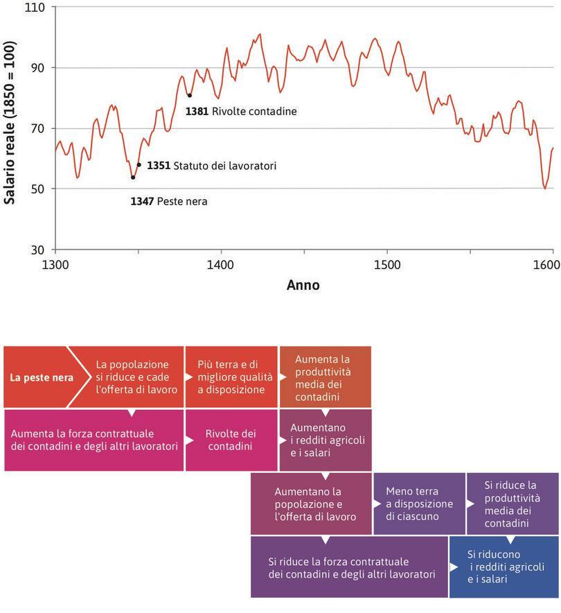Un'economia malthusiana in Inghilterra : Peste nera, offerta di lavoro e salari in un'economia malthusiana.