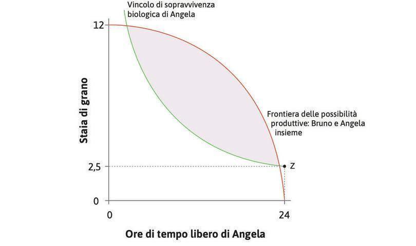 Il vincolo biologico di sopravvivenza : Se Angela non lavora, ha bisogno di 2,5 staia di grano per sopravvivere (punto Z). Se rinuncia a un po' di tempo libero e dedica più energia al lavoro avrà anche bisogno di più cibo, perciò la curva è più alta quando ha meno tempo libero. Questo è il vincolo biologico di sopravvivenza.