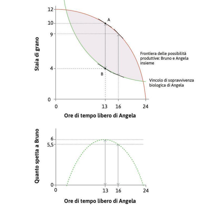 La distanza massima : La distanza verticale tra la frontiera delle possibilità produttive e il vincolo di sopravvivenza biologica è massima quando Angela lavora 11 ore (le rimangono 13 ore di tempo libero).