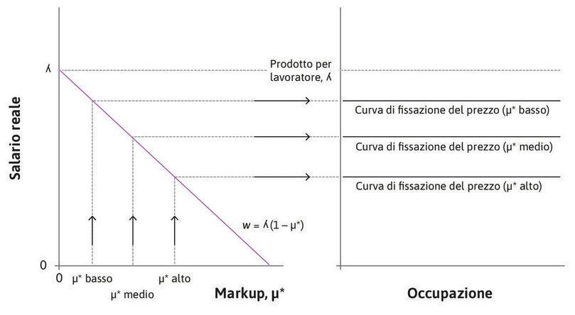Variazioni del markup di lungo periodo determinano uno spostamento della curva della fissazione del prezzo.